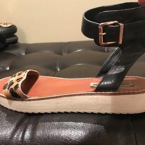 Steve Madden calf skin leopard buckle sandals